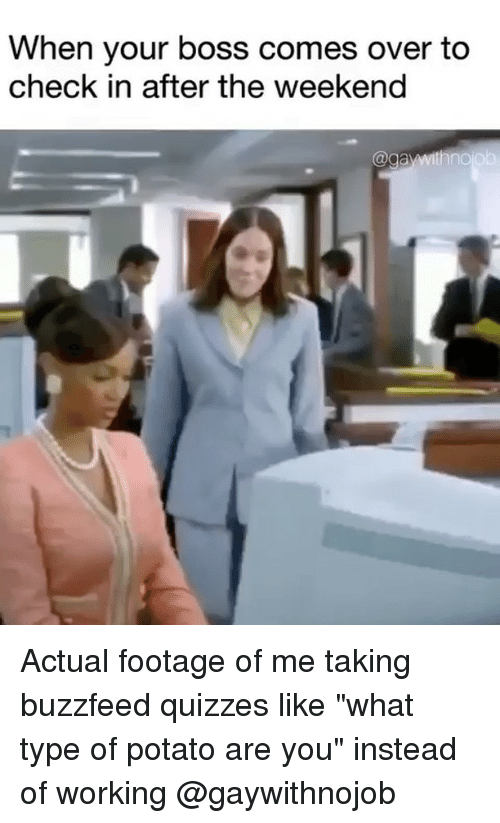"""Buzzfeed, Potato, and The Weekend: When your boss comes over to  check in after the weekend Actual footage of me taking buzzfeed quizzes like """"what type of potato are you"""" instead of working @gaywithnojob"""