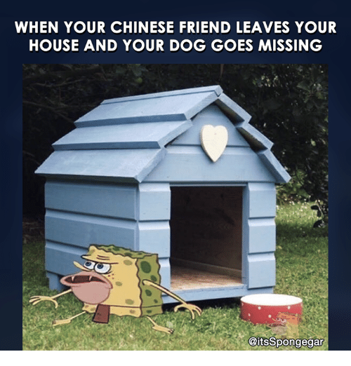 Friend Leaving: WHEN YOUR CHINESE FRIEND LEAVES YOUR  HOUSE AND YOUR DOG GOES MISSING  @itsSpongegar