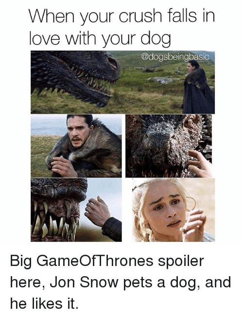 Crush, Love, and Memes: When your crush falls in  love with your dog  @dogsbeingbasic Big GameOfThrones spoiler here, Jon Snow pets a dog, and he likes it.