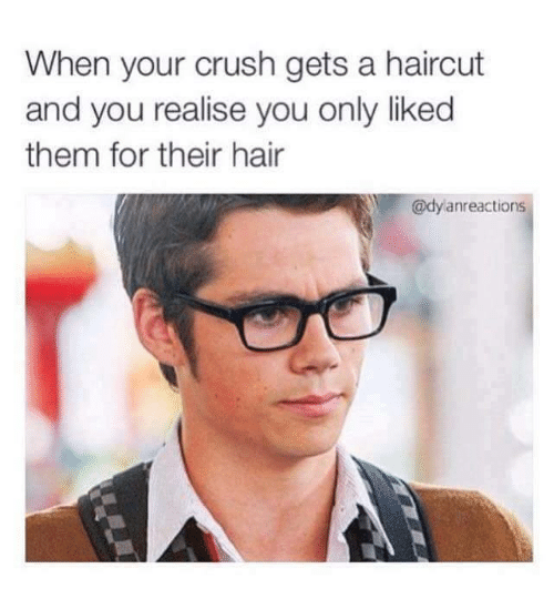 Crush, Haircut, and Memes: When your crush gets a haircut  and you realise you only liked  them for their hair  Y @dylanreactions