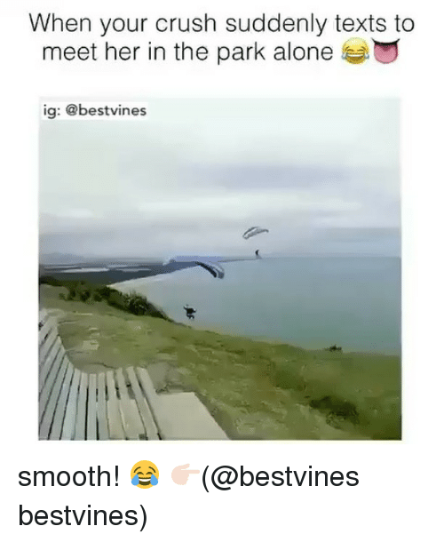 Being Alone, Crush, and Memes: When your crush suddenly texts to  meet her in the park alone  ig: @bestvines smooth! 😂 👉🏻(@bestvines bestvines)