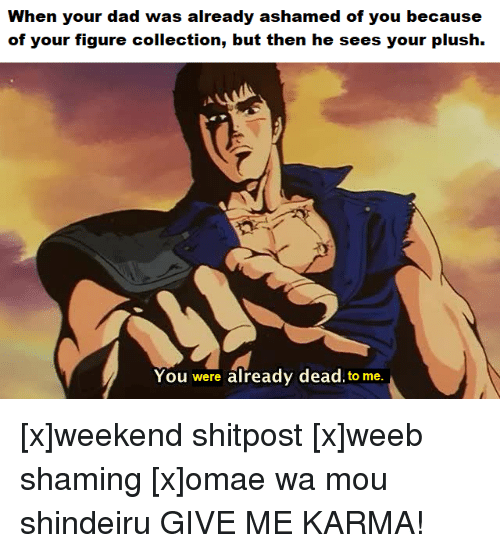 Anime, Dad, and Karma: When your dad was already ashamed of you because  of your figure collection, but then he sees your plush.  You were already dead to me.