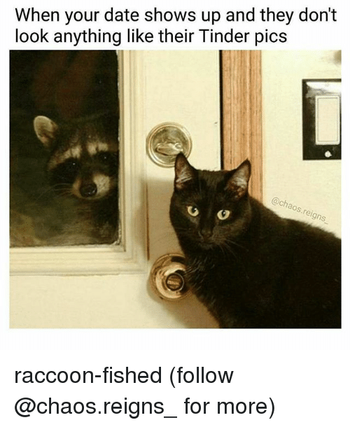 Memes, Tinder, and Date: When your date shows up and they dont  look anything like their Tinder pics  @chao  s.re  igns raccoon-fished (follow @chaos.reigns_ for more)
