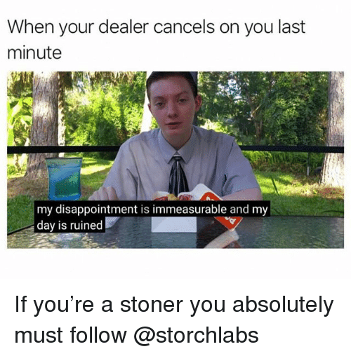 Trendy, Day, and You: When your dealer cancels on you last  minute  my disappointment is immeasurable and my  day is ruined If you're a stoner you absolutely must follow @storchlabs