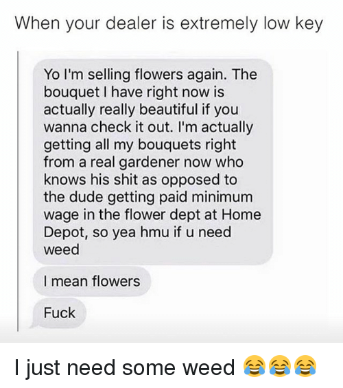 Beautiful, Dude, and Low Key: When your dealer is extremely low key  Yo I'm selling flowers again. The  bouquet I have right now is  actually really beautiful if you  wanna check it out. I'm actually  getting all my bouquets right  from a real gardener now who  knows his shit as opposed to  the dude getting paid minimum  wage in the flower dept at Home  Depot, so yea hmu if u need  Weed  I mean flowers  Fuck I just need some weed 😂😂😂