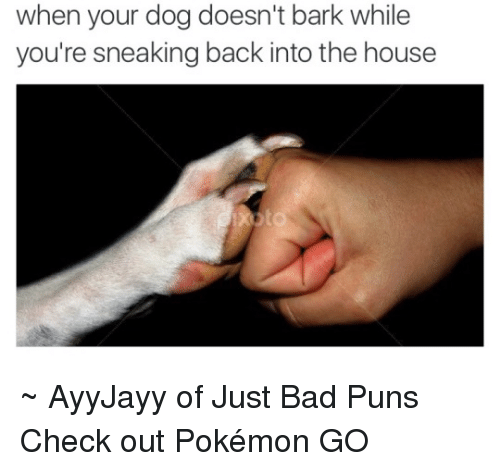 Bad Puns: when your dog doesn't bark while  you're sneaking back into the house ~ AyyJayy of Just Bad Puns  Check out Pokémon GO