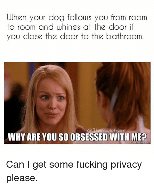 meps: When your dog follows you from room  to room and whines at the door if  you close the door to the bathroom  WHY ARE YOU SO OBSESSED WITH MEP Can I get some fucking privacy please.