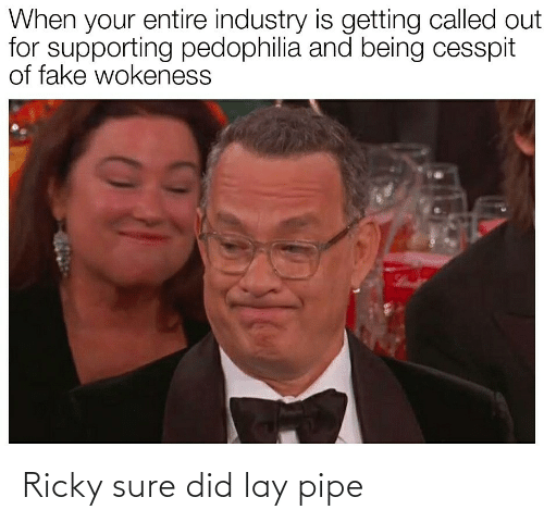 ricky: When your entire industry is getting called out  for supporting pedophilia and being cesspit  of fake wokeness Ricky sure did lay pipe