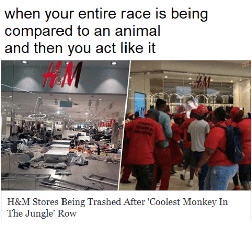 Animal, Monkey, and Race: when your entire race is being  compared to an animal  and then you act like it  HA  H&M Stores Being Trashed After 'Coolest Monkey In  The Jungle' Row
