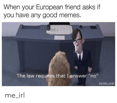 """Good Memes: When your European friend asks if  you have any good memes.  The law requires that I answer """"no""""  DANKLAND me_irl"""