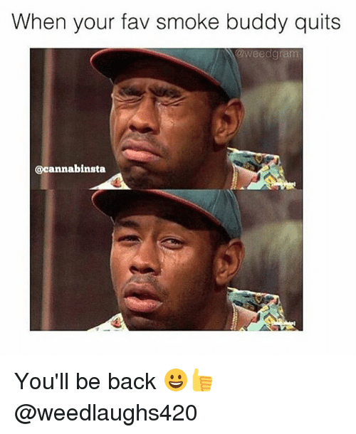 Memes, Back, and 🤖: When your fav smoke buddy quits  oweedgram  @cannabinsta You'll be back 😀👍 @weedlaughs420