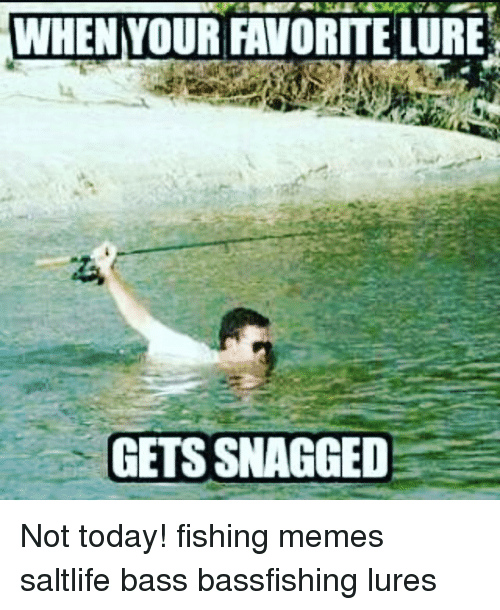 Fishing meme 28 images funny fishing memes bass for Best time to fish today
