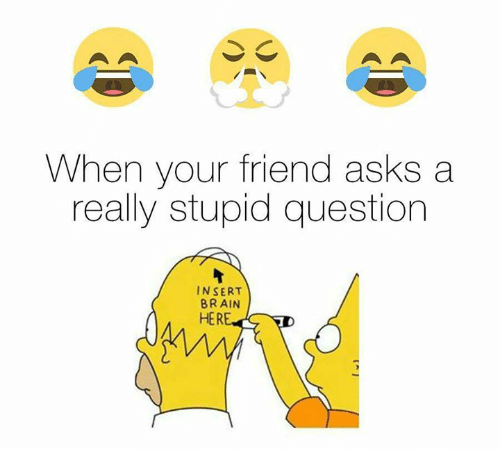 Stupid Question: When your friend asks a  really stupid question  INSERT  BRAIN  HER