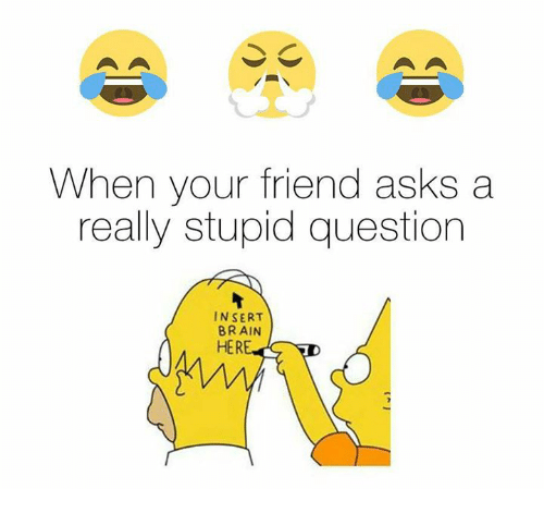 stupid questions: When your friend asks a  really stupid question  INSERT  BRAIN  HER