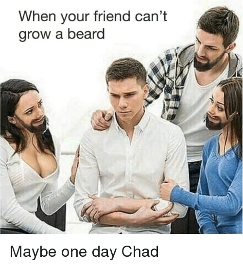 Beard, Dank Memes, and Chad: When your friend can't  arow a beard  nia Maybe one day Chad
