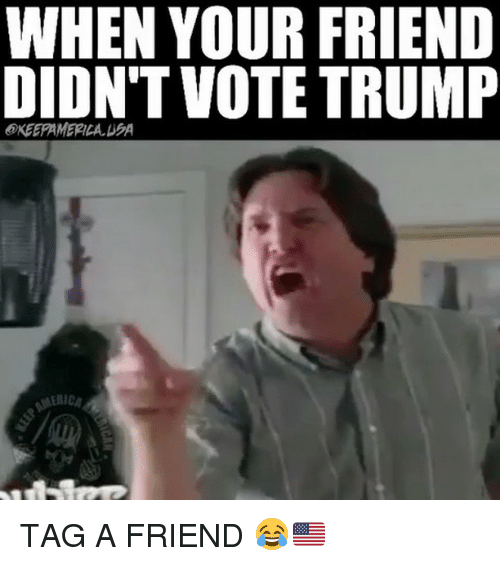 Memes, Trump, and 🤖: WHEN YOUR FRIEND  DIDNT VOTE TRUMP  @KEEPAMERICA EA TAG A FRIEND 😂🇺🇸