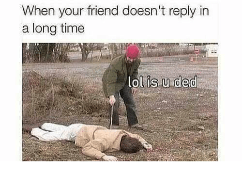 Dedded: When your friend doesn't reply in  a long timee  lol is.u ded