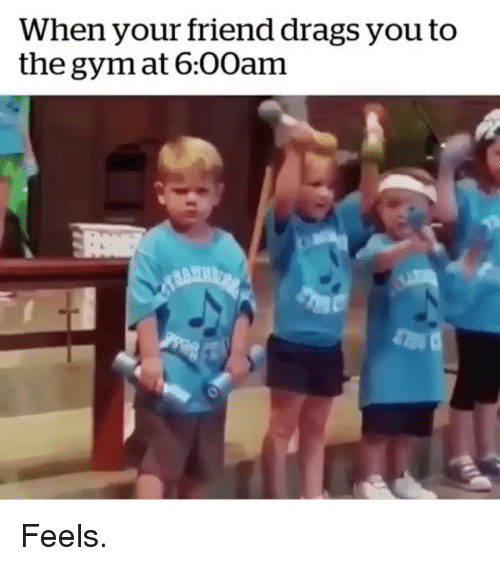 Gym, Friend, and You: When your friend drags you to  the gym at 6:00am Feels.