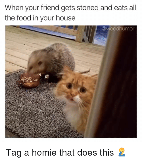 Food, Homie, and Weed: When your friend gets stoned and eats all  the food in your house  @weedhumor Tag a homie that does this 🤦‍♂️