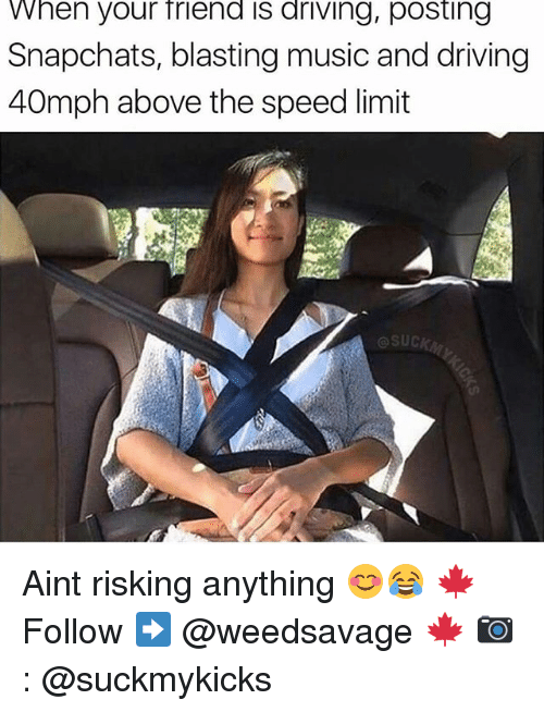Driving, Memes, and Music: When your friend is driving, posting  Snapchats, blasting music and driving  40mph above the speed limit  SUCK Aint risking anything 😊😂 🍁Follow ➡ @weedsavage 🍁 📷: @suckmykicks
