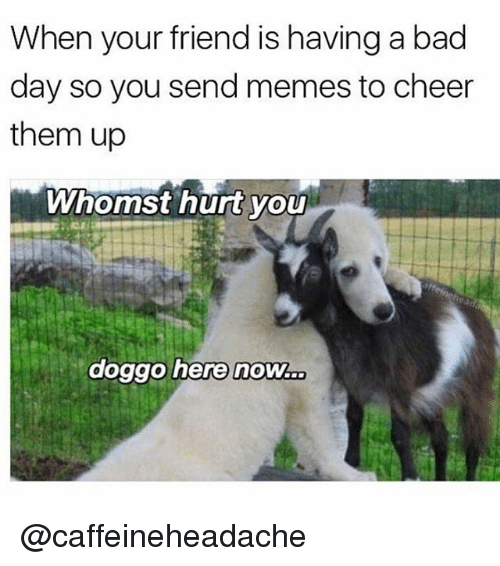 Bad, Bad Day, and Memes: When your friend is having a bad  day so you send memes to cheer  them up  Whomst hurt you  doggo here now. @caffeineheadache