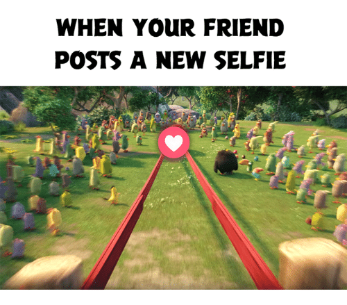 Selfie, Friend, and New: WHEN YOUR FRIEND  POSTS A NEW SELFIE