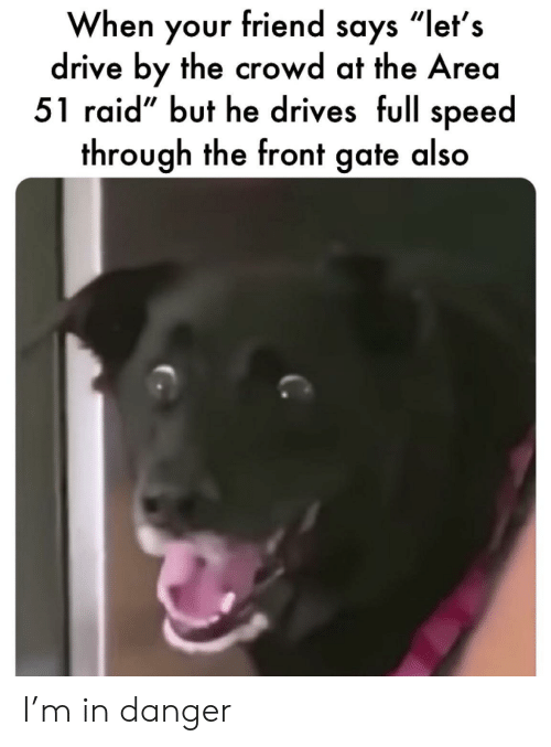 "Drive By: When your friend says ""let's  drive by the crowd at the Area  51 raid"" but he drives full speed  through the front gate also I'm in danger"