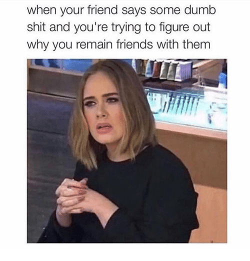 Dumb, Friends, and Shit: when your friend says some dumb  shit and you're trying to figure out  why you remain friends with them