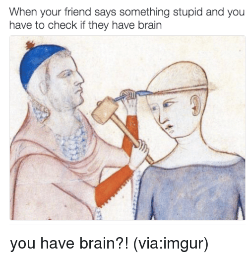 Saying Something Stupid: When your friend says something stupid and you  have to check if they have brain you have brain?! (via:imgur)