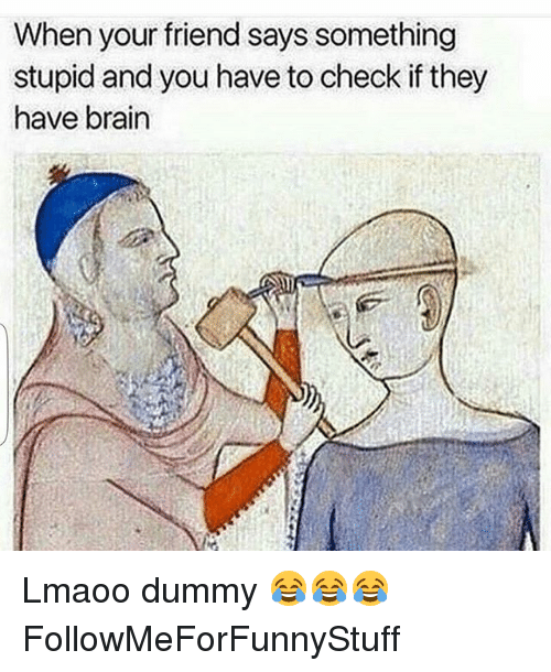 Saying Something Stupid: When your friend says something  stupid and you have to check if they  have brain Lmaoo dummy 😂😂😂 FollowMeForFunnyStuff