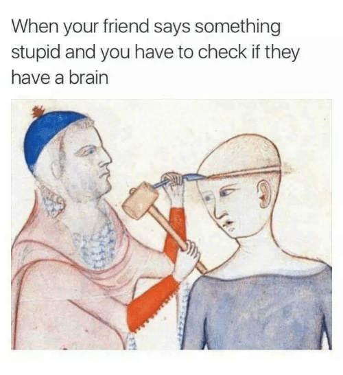 Relationships, Brain, and Friend: When your friend says something  stupid and you have to check if they  have a brain