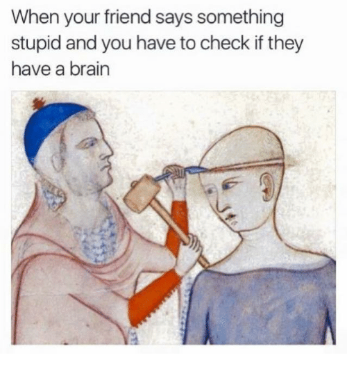 Saying Something Stupid: When your friend says something  stupid and you have to check if they  have a brain
