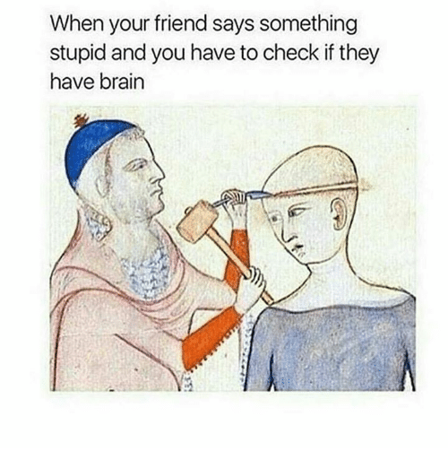 Saying Something Stupid: When your friend says something  stupid and you have to check if they  have brain