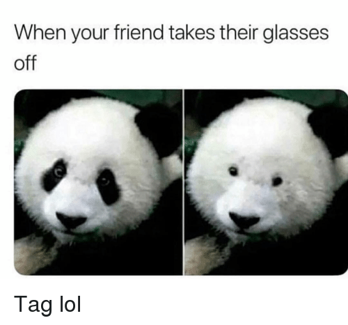 Funny, Lol, and Glasses: When your friend takes their glasses  off Tag lol