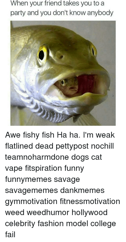 awe: When your friend takes you to a  party and you don't know anybody Awe fishy fish Ha ha. I'm weak flatlined dead pettypost nochill teamnoharmdone dogs cat vape fitspiration funny funnymemes savage savagememes dankmemes gymmotivation fitnessmotivation weed weedhumor hollywood celebrity fashion model college fail