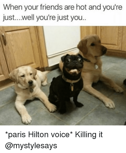 Paris Hilton, Hilton, and Girl Memes: When your friends are hot and you're  just... well you're just you *paris Hilton voice* Killing it @mystylesays