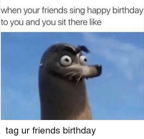 Memes, Singing, and Happy Birthday: when your friends sing happy birthday  to you and you sit there like tag ur friends birthday