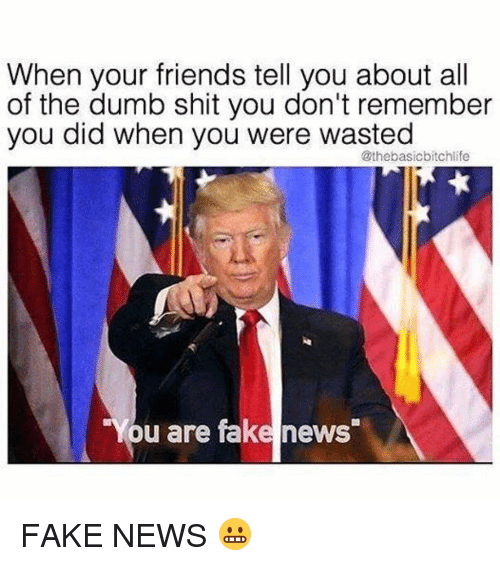Dumb, Memes, and All of The: When your friends tell you about all  of the dumb shit you don't remember  you did when you were wasted  @the basicbitchlife  You are fake news FAKE NEWS 😬