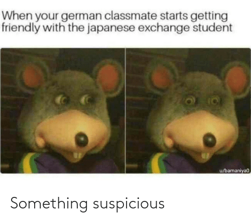 german: When your german classmate starts getting  friendly with the japanese exchange student  u/bamaniya0 Something suspicious