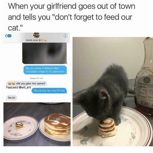 "Funny, Lol, and Chocolate: When your girlfriend goes out of town  and tells you ""don't forget to feed our  cat.""  く四  Kenzie Jones  Do you know if Wilson likes  chocolate chips in his pancakes  Today 01 AM  did you give him some?  Featured @will ent  Would you be mad if I did  No lol"