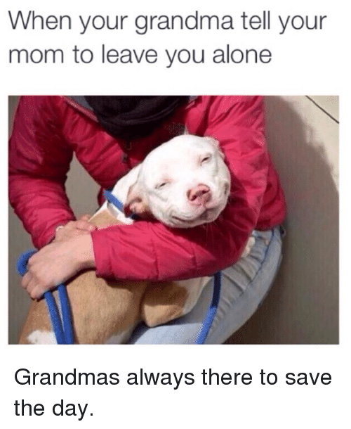 save-the-day: When your grandma tell your  mom to leave you alone Grandmas always there to save the day.