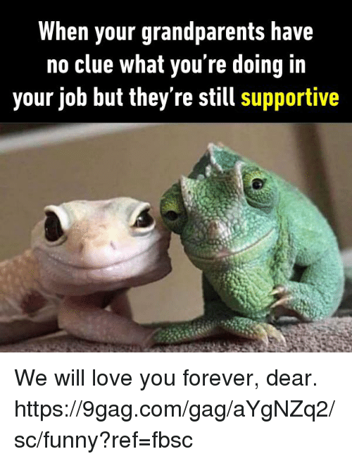 9gag, Dank, and Funny: When your grandparents have  no clue what you re doing Iin  your job but they re still supportive We will love you forever, dear.  https://9gag.com/gag/aYgNZq2/sc/funny?ref=fbsc
