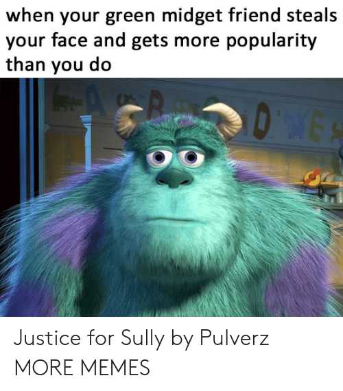 des: when your green midget friend steals  your face and gets more popularity  than you do  DES Justice for Sully by Pulverz MORE MEMES