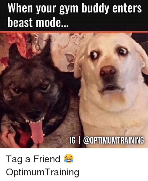 Beast Mode: When your gym buddy enters  beast mode.  IG @OPTIMUMTRAINING Tag a Friend 😂 OptimumTraining