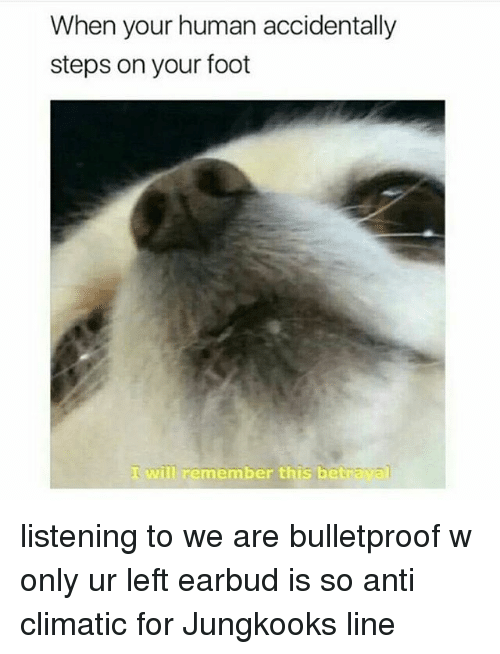 Anti Climatic: When your human accidentally  steps on your foot  I will remember this betr listening to we are bulletproof w only ur left earbud is so anti climatic for Jungkooks line