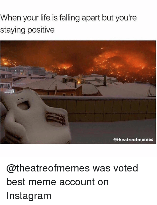 Instagram, Life, and Meme: When your life is falling apart but you're  staying positive  @theatreofmemes @theatreofmemes was voted best meme account on Instagram