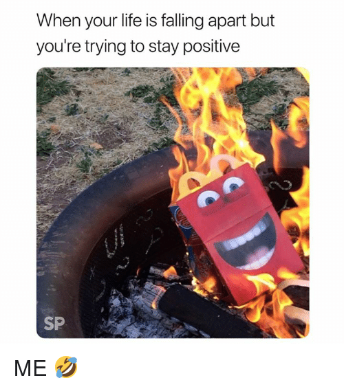 Life, Stay, and Youre: When your life is falling apart but  you're trying to stay positive  SP ME 🤣