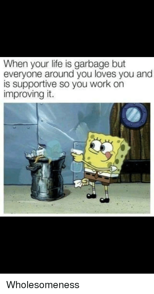 Life, Work, and Garbage: When your life is garbage but  everyone around you loves you and  is supportive so you work on  improving it. <p>Wholesomeness</p>