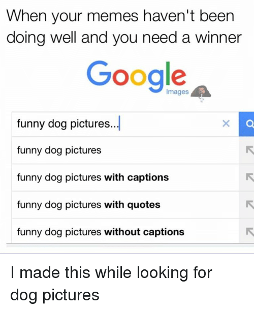 Funny Meme Pics Without Captions : Best memes about google funnies