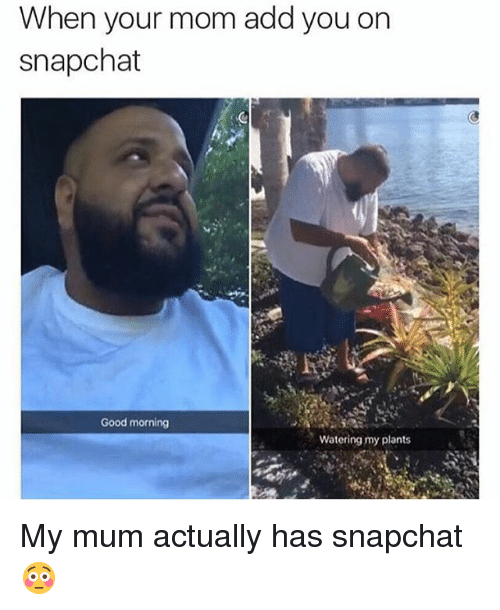 Moms, Snapchat, and Good Morning: When your mom add you on  on  snapchat  Good morning  Watering my plants My mum actually has snapchat 😳
